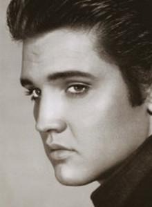 cropped-Elvis_banner_56.jpg